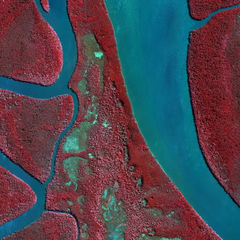 Multispectral Aerial Photography