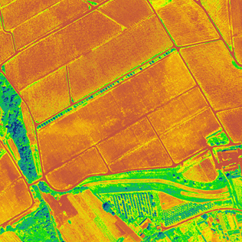 NDVI Aerial Thermography